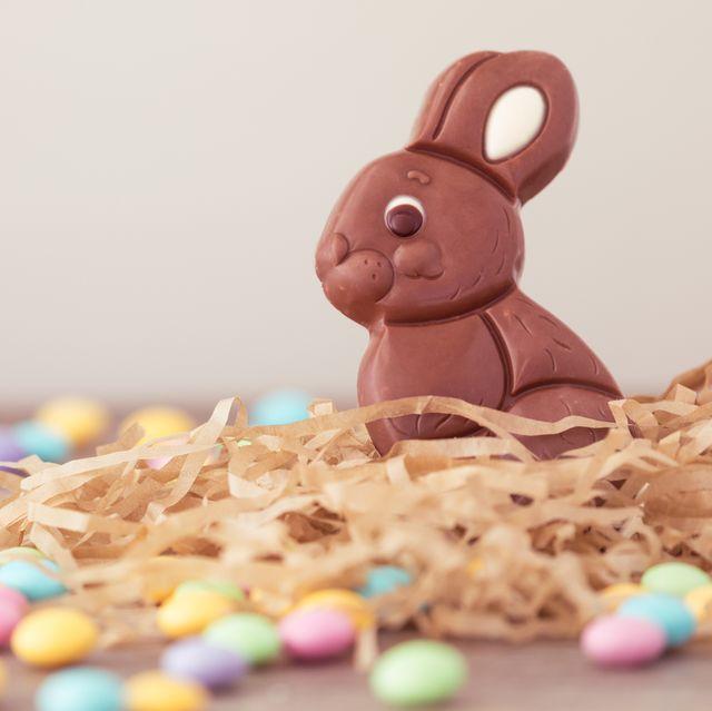 Best Animal Easter Eggs Easter Recipes
