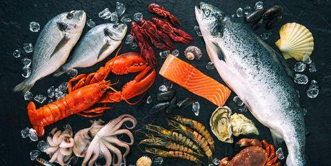 Fish, Fish products, Fish, Organism, Seafood, Koi, Marine biology, Oily fish, Food, Feeder fish,