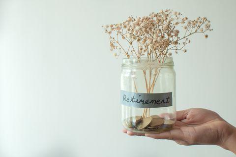 Hand, Plant, Flower,