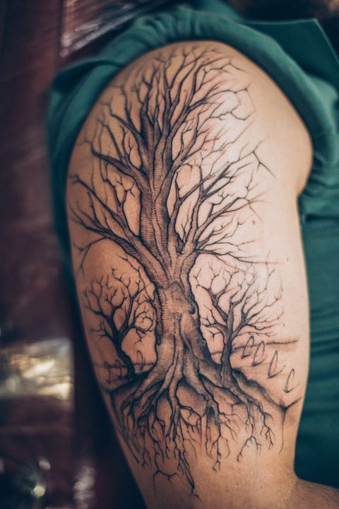 one man, tree tattoo on his arm is finished, part of