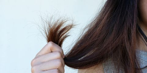 Dry Hair Remedies - 9 Solutions & Shampoos For Dry, Brittle Hair