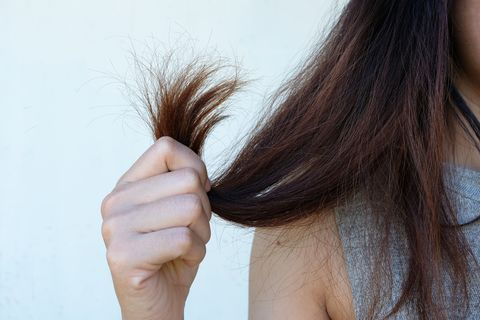 Image result for dry hair