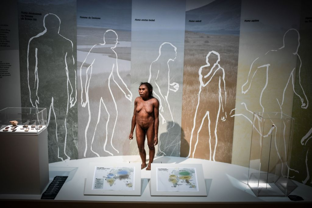 Humans Broke Up with Neanderthals Much Longer Ago Than We Thought