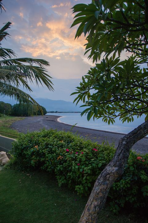 Tropics, Tree, Nature, Sky, Vegetation, Palm tree, Sea, Morning, Arecales, Shore,