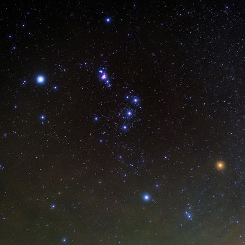 the constellation of orion