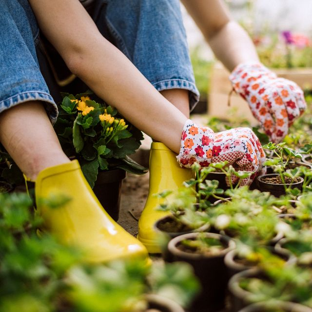 24 Best Gardening Shoes 2020 - Supportive Gardening Clogs and Boots