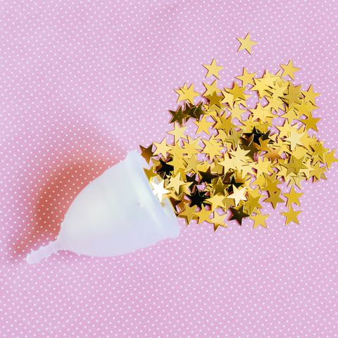 Flower, Pink, Plant, Cut flowers, Petal, Pollen, Wildflower, Blossom, Membrane-winged insect,