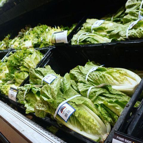 Leaf vegetable, Vegetable, Food, Romaine lettuce, Local food, Lettuce, Cruciferous vegetables, Produce, Spring greens, Plant,