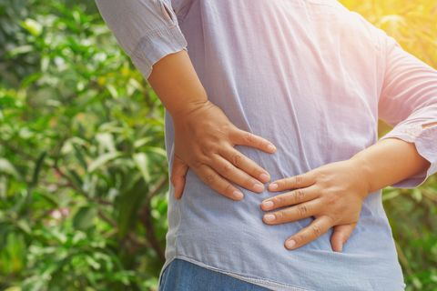 How to Fix Back Pain — The Back Pain Repair Manual