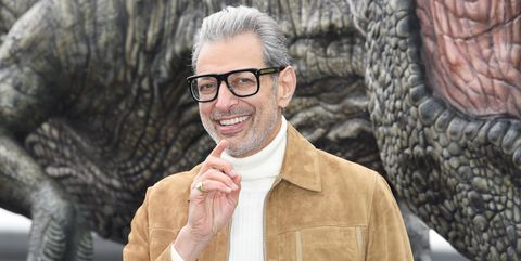Jeff Goldblum Jurassic Park