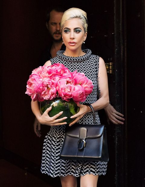 Lady Gaga carrying a Delvaux bag.