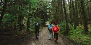 wandelen-bos-vrouw-man