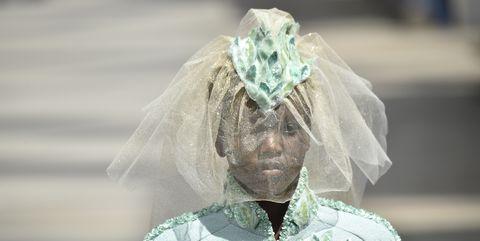 White, Headpiece, Bridal accessory, Veil, Bridal veil, Dress, Hair accessory, Headgear, Fashion accessory, Plant,