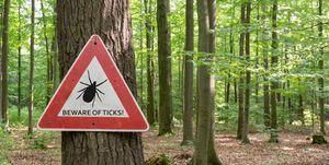 let op teken tekenbeten in het bos een bord voor hardlopers