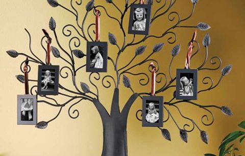 Family Tree Hanging Photo Frames