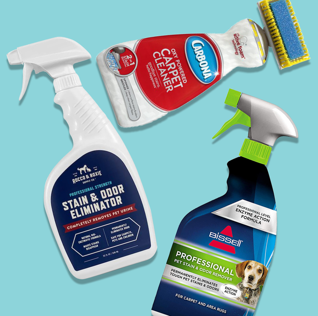 the best carpet stain removers