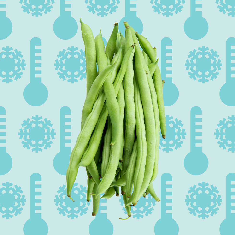 How To Freeze Green Beans How To Blanch Green Beans For Freezing