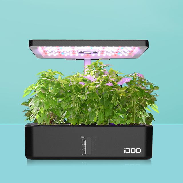 best indoor herb gardens