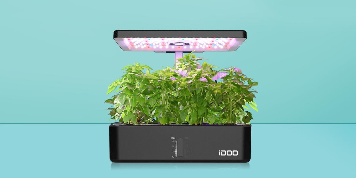 9 Best Indoor Herb Garden Kits Of 2021, Countertop Herb Garden