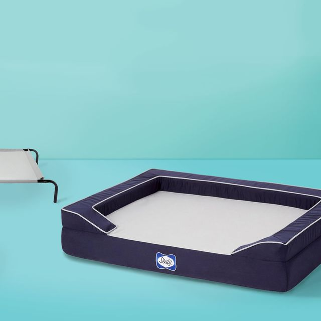 Best Cooling Dog Beds of 2020, According to Reviewers