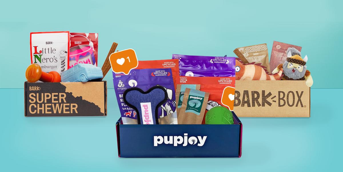 10 коробок для подписки на крутые собаки, чтобы Фидо был занят круглый год