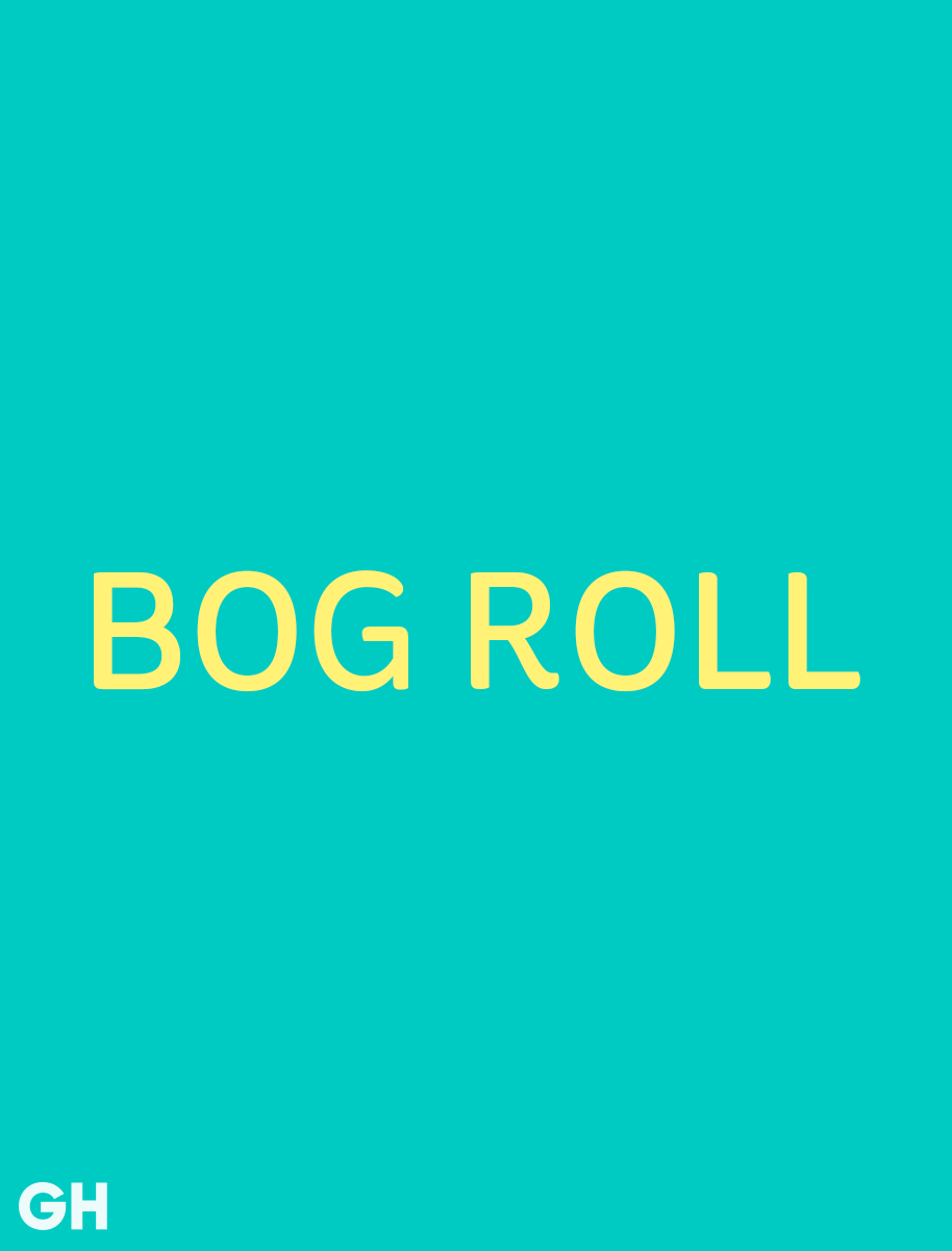 British Slang Word Bog Roll
