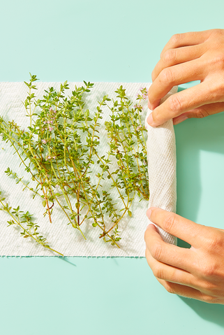 hardy herbs