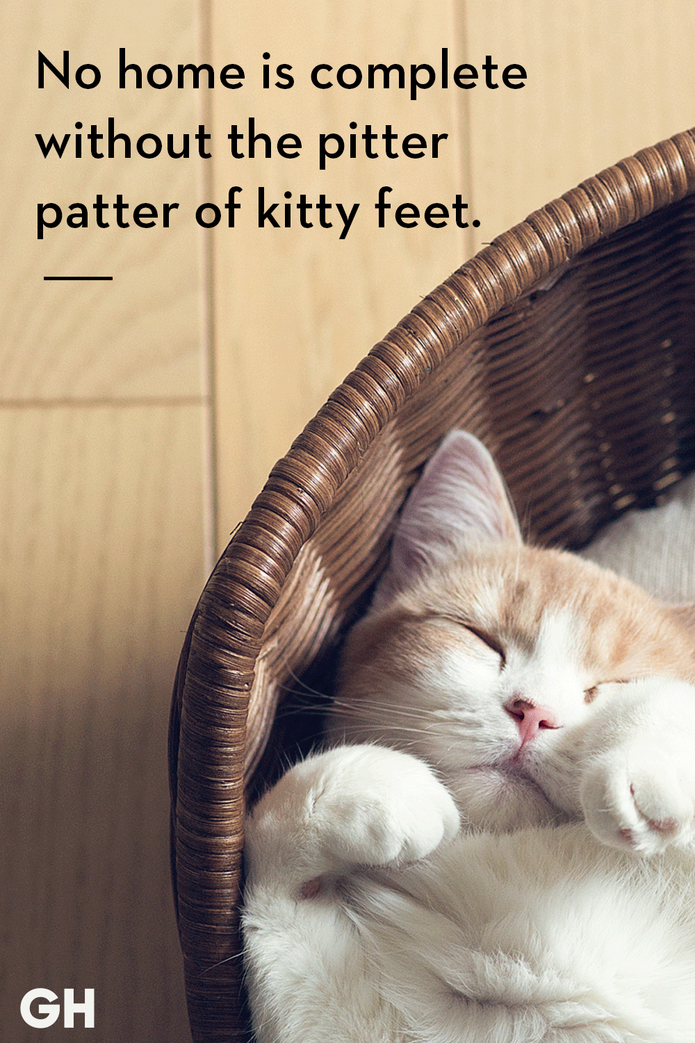 52eed750 25 Best Cat Quotes That Perfectly Describe Your Kitten - Funny and Cute Cat  Quotes