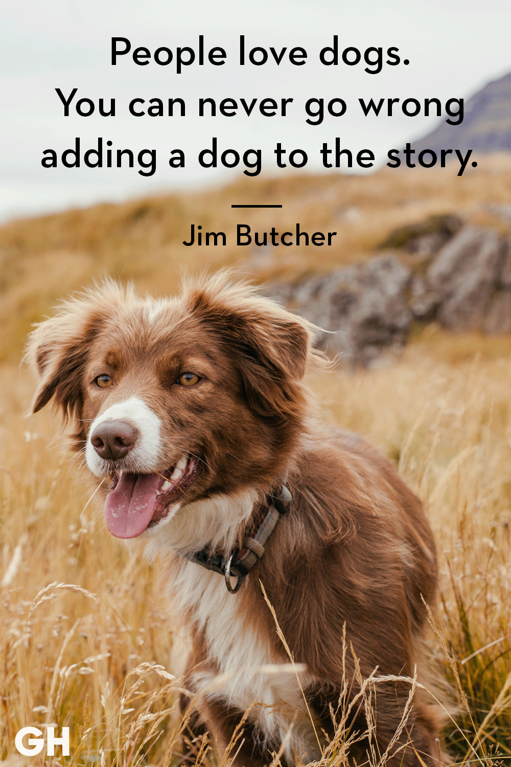 c316f2d9 30 Dog Quotes That Every Animal Lover Will Relate To - Best Dog Quotes
