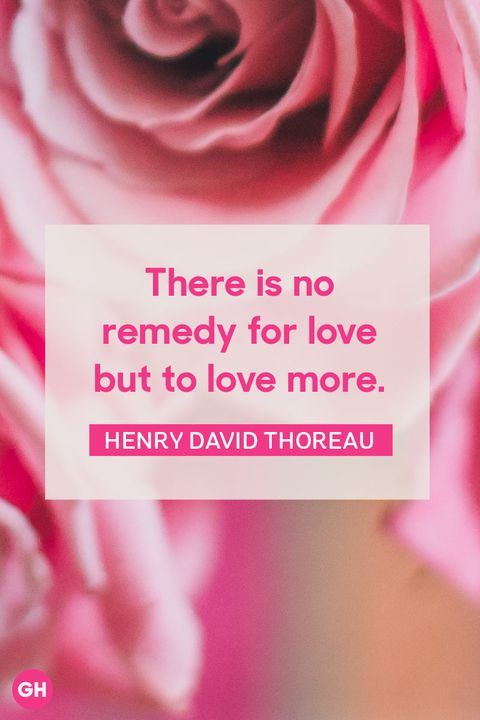 Best Famous Quotes 60 Famous Quotes About Happiness Love And Fascinating Rose Quotes Love