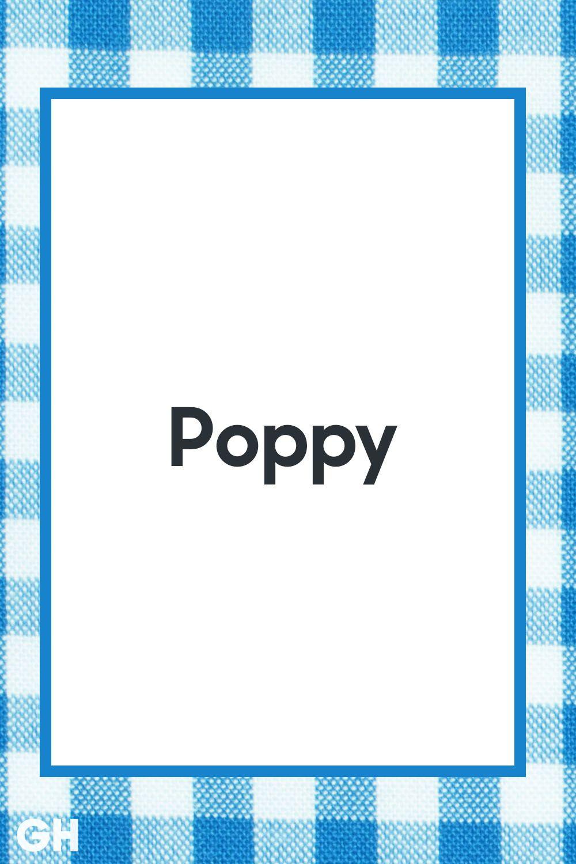 17 Cool Grandpa Names That Aren't