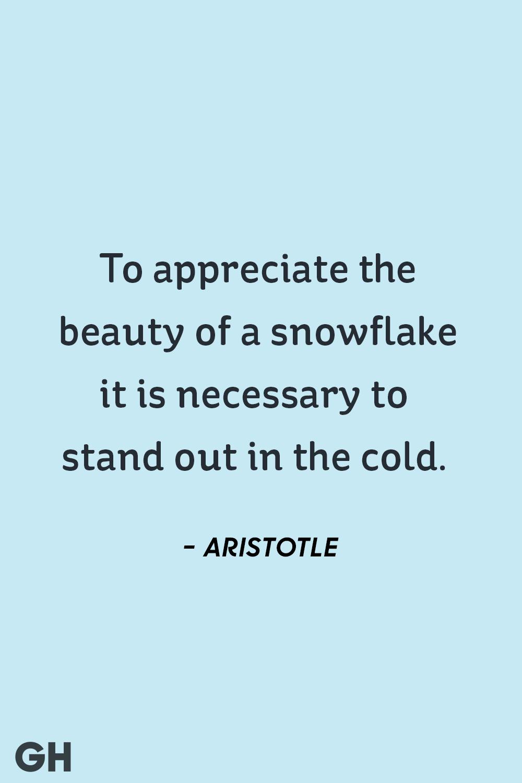 Aristotle - winter quotes