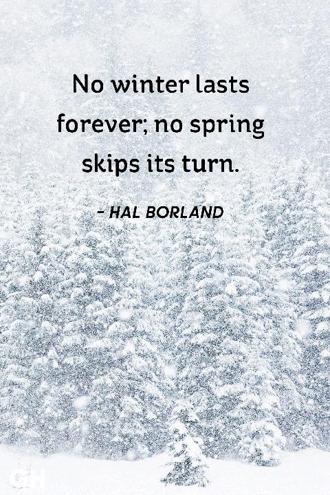 Romantic Winter Quotes | Wedding Ideas