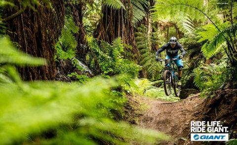 Rapha, giant, mountainbike, workshop, test