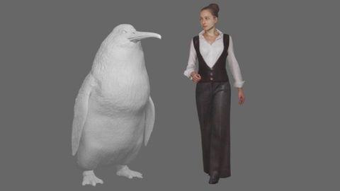 Flightless bird, Bird, Penguin, Standing, Formal wear, Beak, Style,