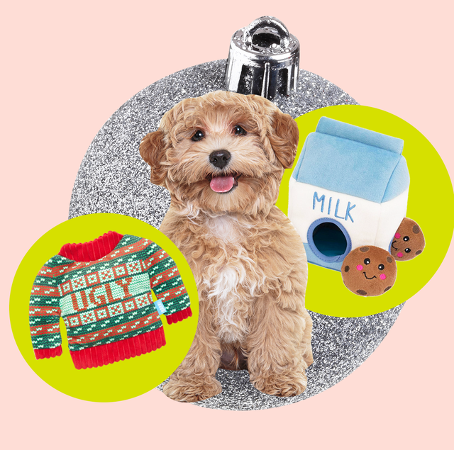22 Dog Christmas Gifts For Your Puppy Gift Ideas For Dog Lovers