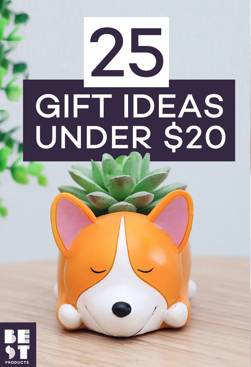 26 Best Gifts Under 20 Fun Gift Ideas For 20 Or Less