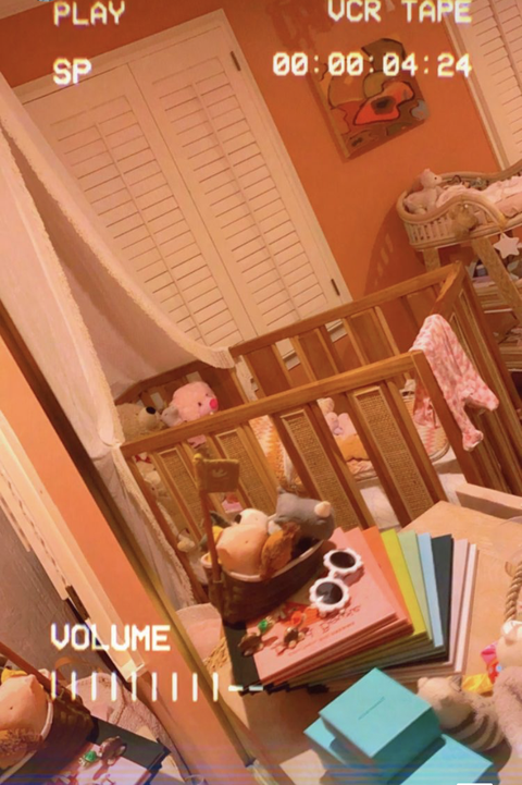 crib with stuffed animals, white canopy, colorful books