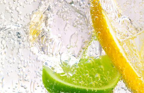 gin and tonic with lemon and lime