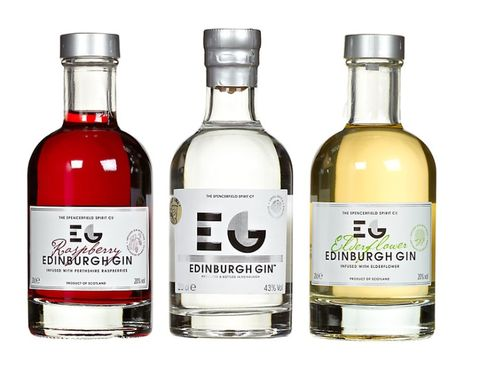 25 Christmas Present Ideas For The Gin Lover In Your Life