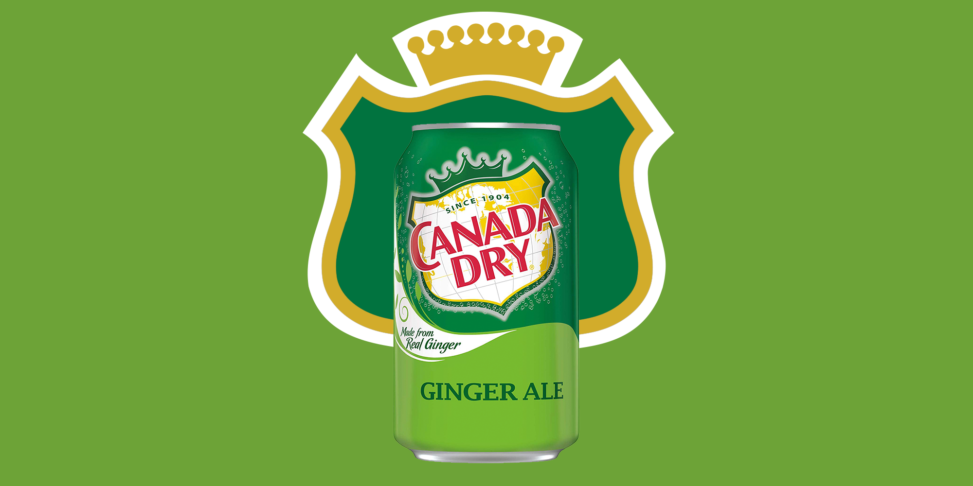 10 Best Ginger Ale Brands Canada Dry Is Still The Top Ginger Soda