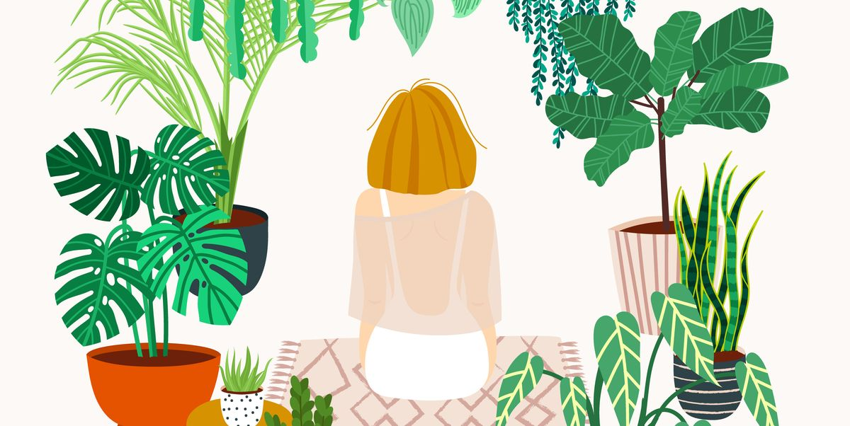 How to enjoy gardening, whatever your space: 12 garden ideas from an expert