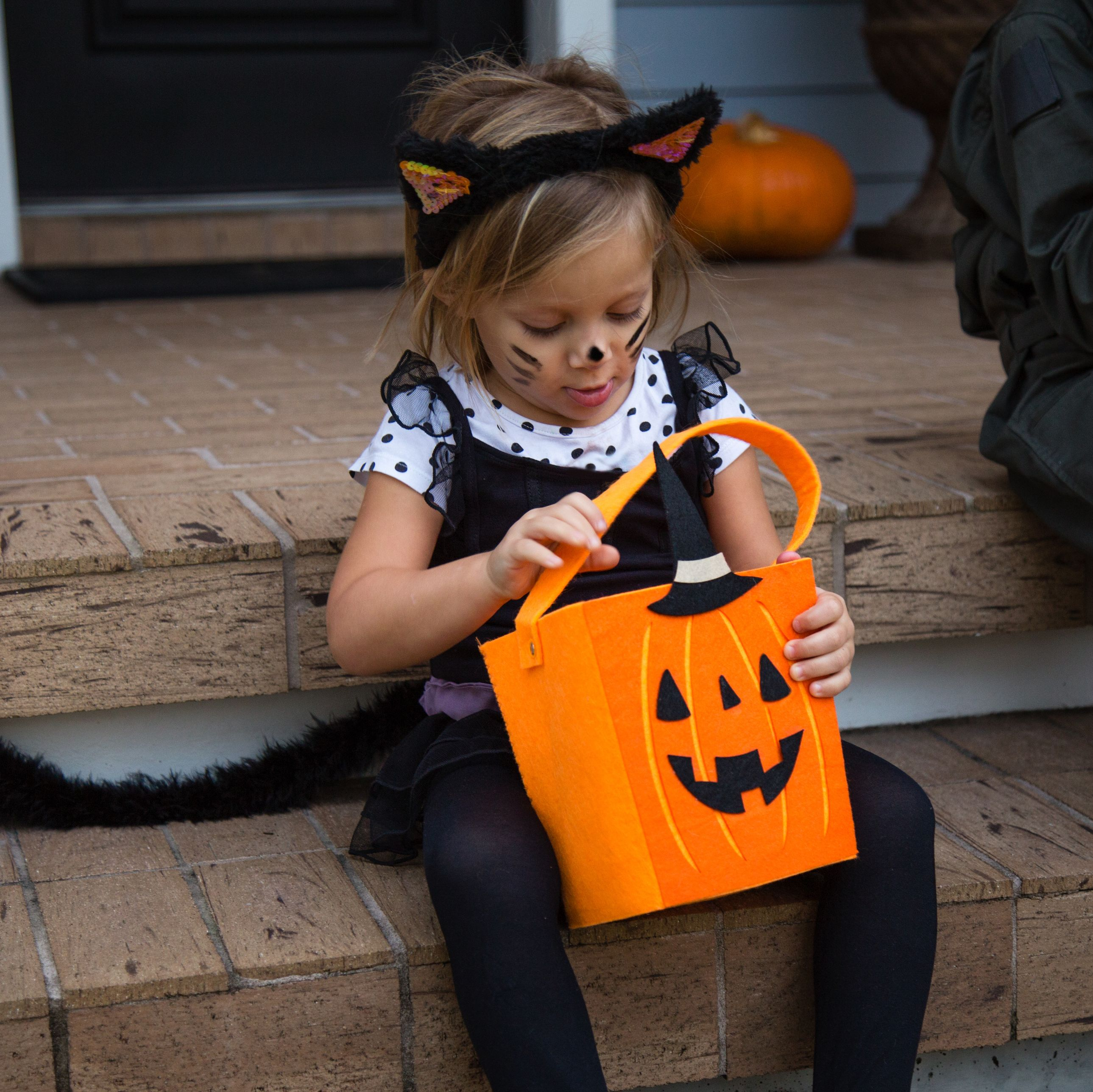 How To Make A Diy Cat Costume For Halloween Easy Last Minute Diy
