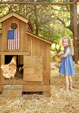 Photo of girl and a chicken coop