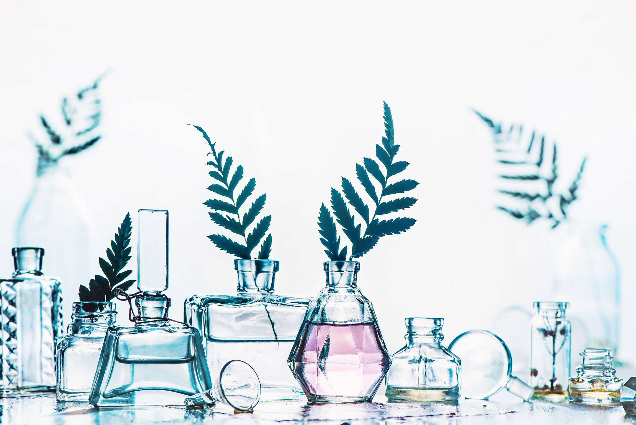 My Search for a Totally Natural, Environmentally Friendly Fragrance