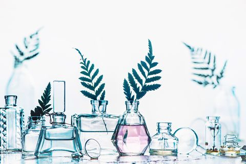 Glass bottle collection with ferns and leaves