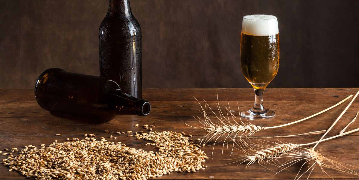 How To Make Beer A Guide To Making Your Own Home Brew