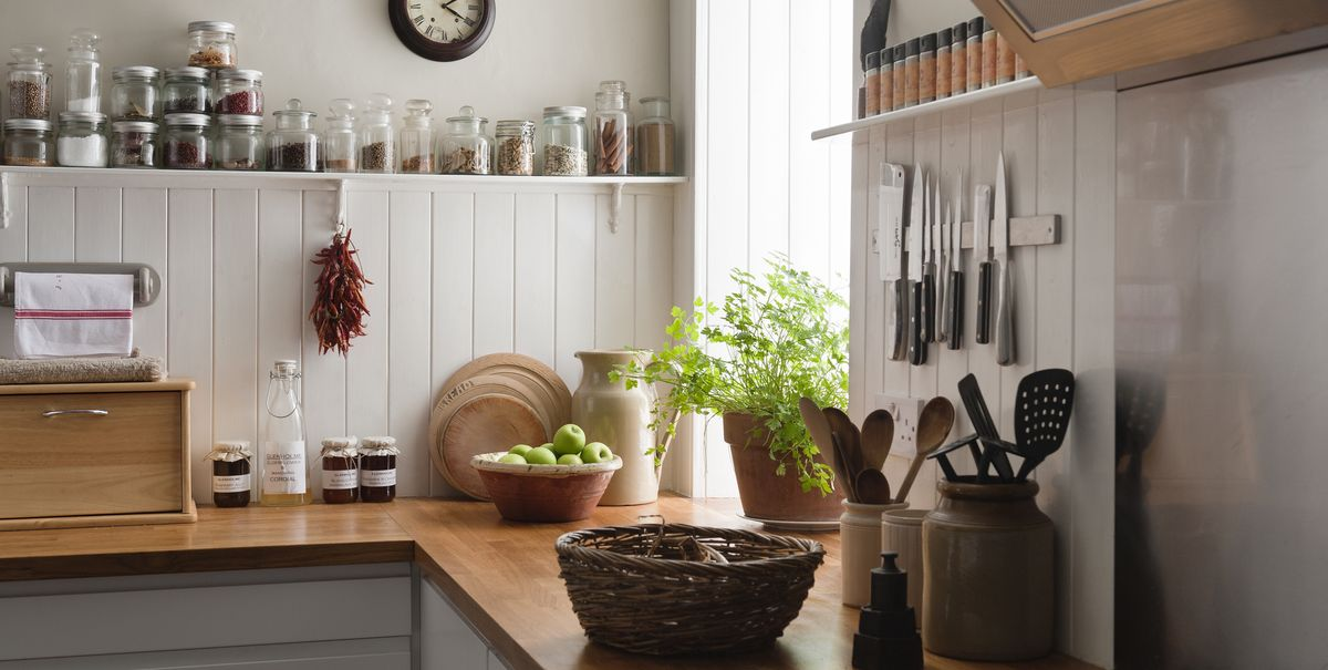 15 Best Kitchen Plants Houseplants To Grow In Your Kitchen