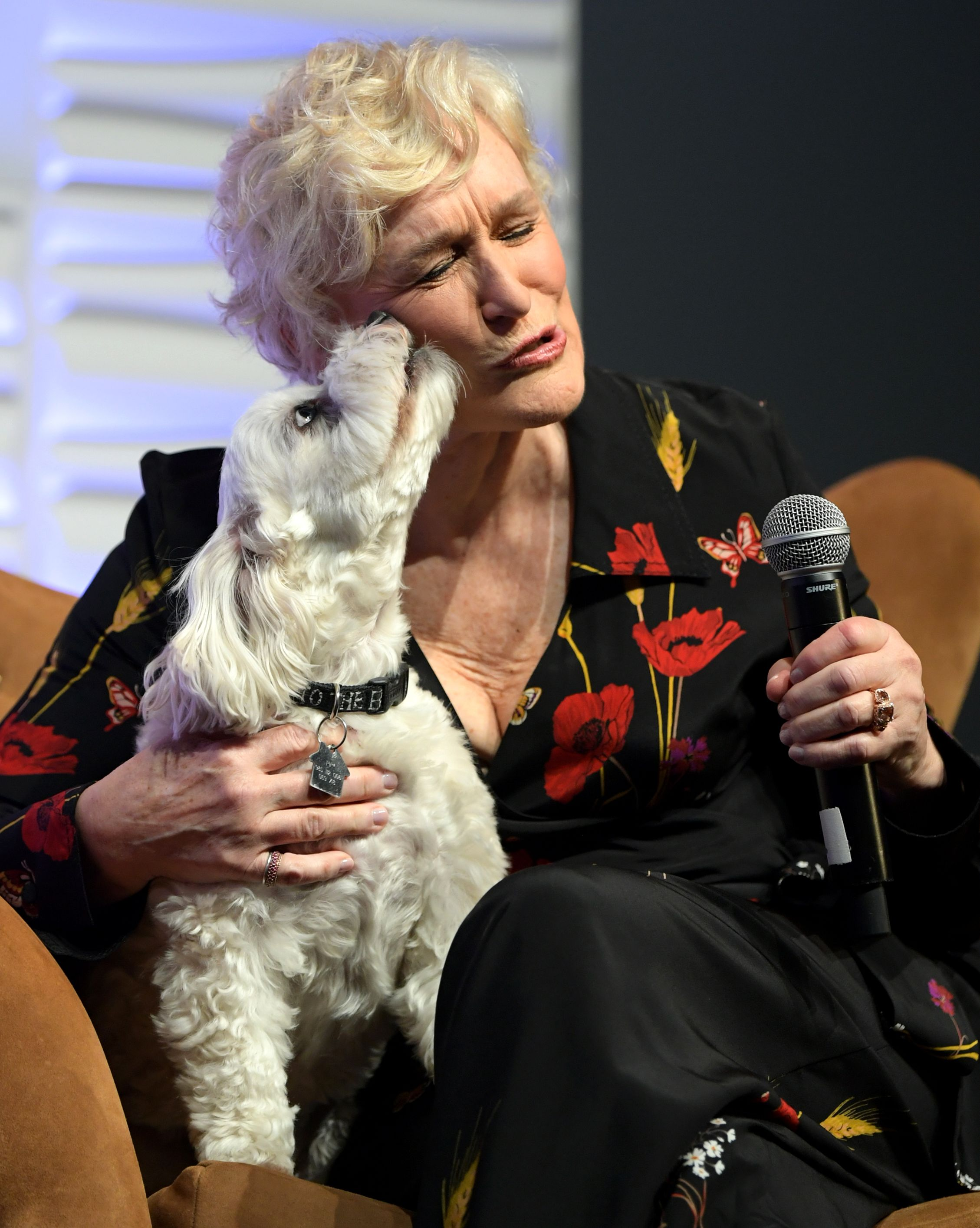 Pip gives Glenn a kiss at the Santa Barbara International Film Festival.