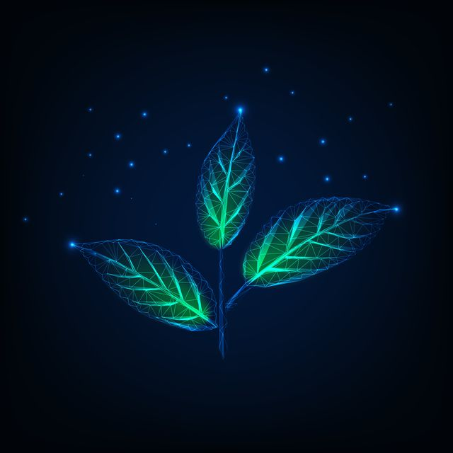 glowing plant with stem and green leaves made of lines, dots, triangles, low polygonal shapes ecology, growth concept